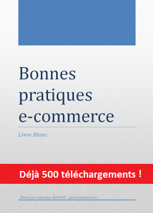 Livre blanc bonnes pratiques e-commerce