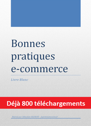 livre blanc: bonnes pratiques e-commerce